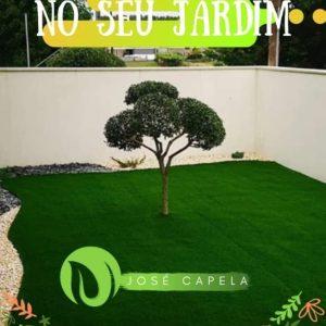 plante com amor no seu jardim